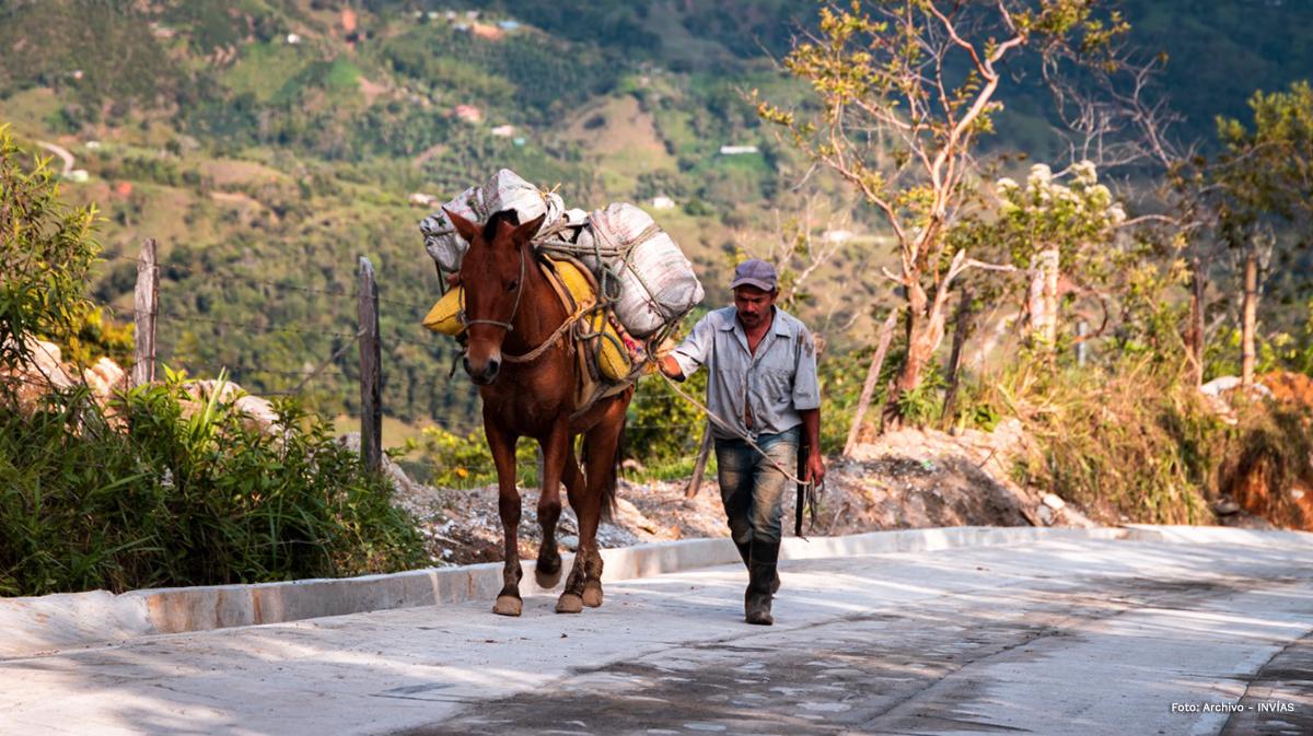 Fotografía de campesino caminando junto a su caballo por las vías terciarias del país.
