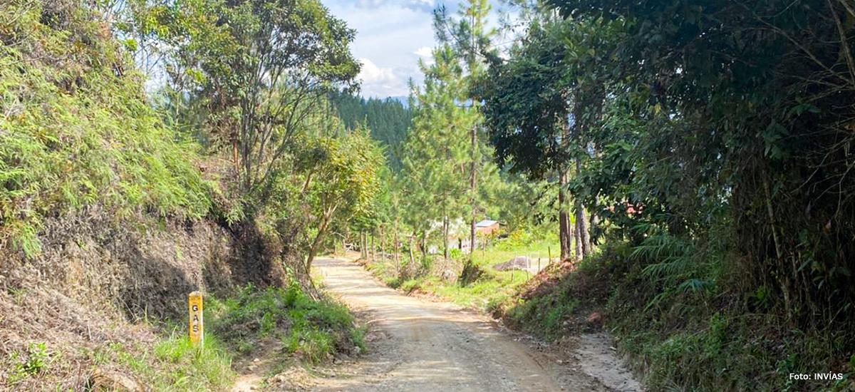Fotografía de vía rural.